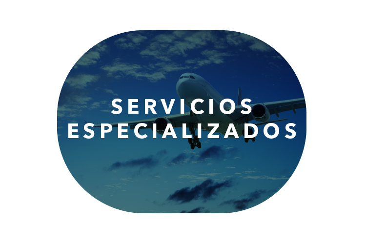 ALS | taller aeronáutico | servicios especializados